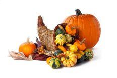 photo-24716021-pumpkin-and-cornucopia